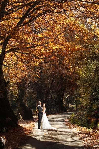 fotos otoño